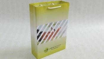 Бумажный пакет с нанесенным логотипом
