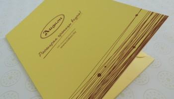 Брендированная папка из картона с кормашком